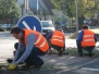 Reinigung der Verkehrsinsel Kreisel in Bösingfeld